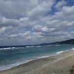 沖縄本島北部1月限定の観光を考えてみた。