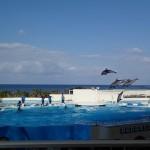 沖縄旅行2泊3日を路線バス利用で考えてみた。