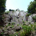 大石林山ー世界最北端熱帯カルスト台地。