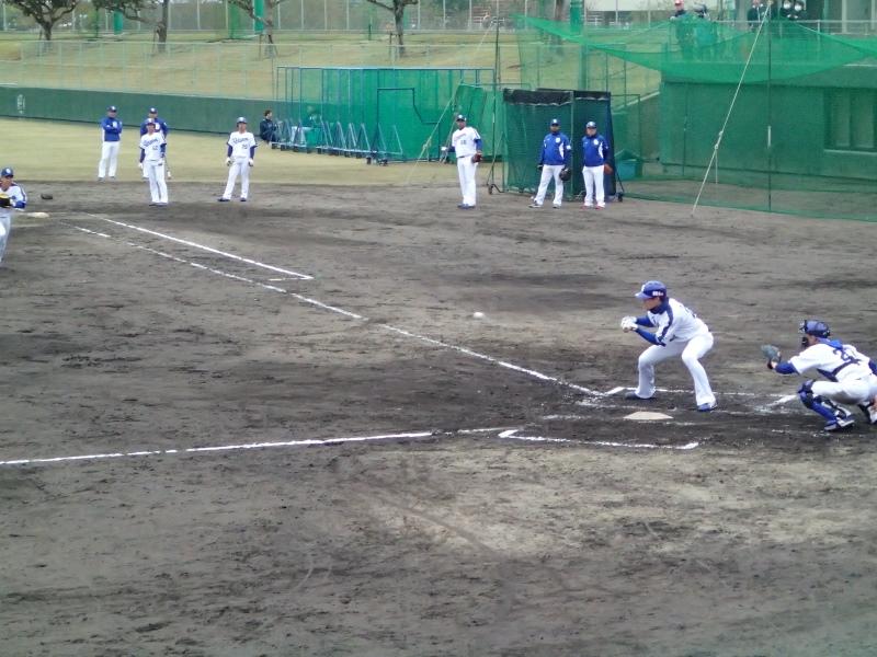 プロ野球キャンプ 沖縄情報 日程や場所、周辺 …