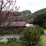 パワースポット スピリチャル的観光スポット沖縄「大石林山」:巨岩・石林コース