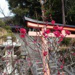 滋賀県長浜で2か月半76泊 観光のまとめ。